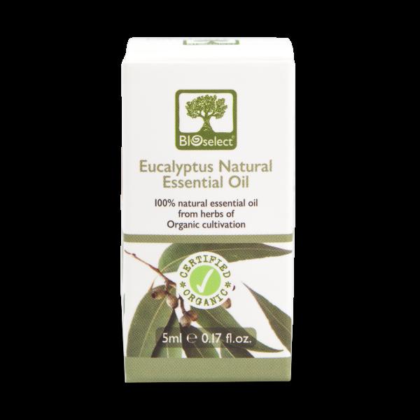 Eukalyptusöl - biozertifiziertes, natürliches, essentielles ätherisches Öl