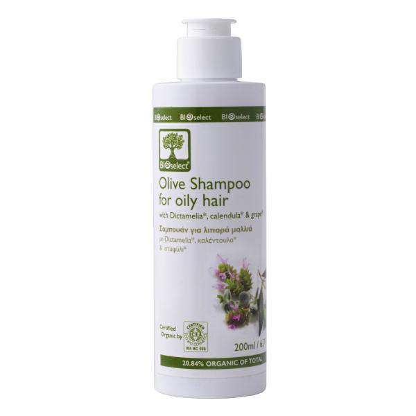 Bio-Shampoo bei fettigem Haar