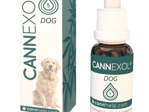 Cannexol DOG 5% CBD Öl | Hund | zertifiziert | 10ml | Aroma